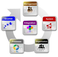 organisation komplexer systeme